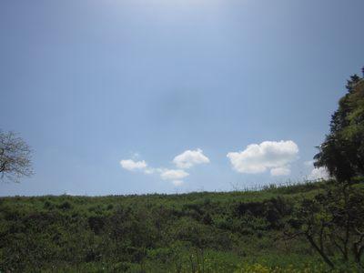 hatakumo20134.10.jpg
